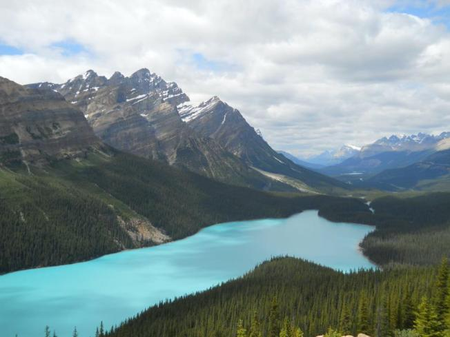 The sneaky surprise of Peyto Lake will make your jaw drop open
