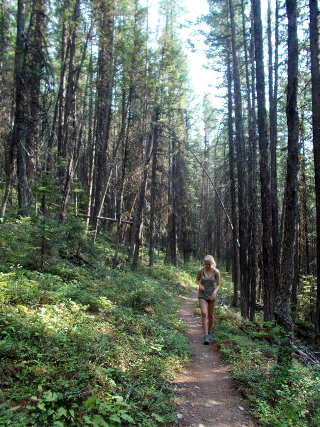 An anxious walk along the Lower Quartz Trail