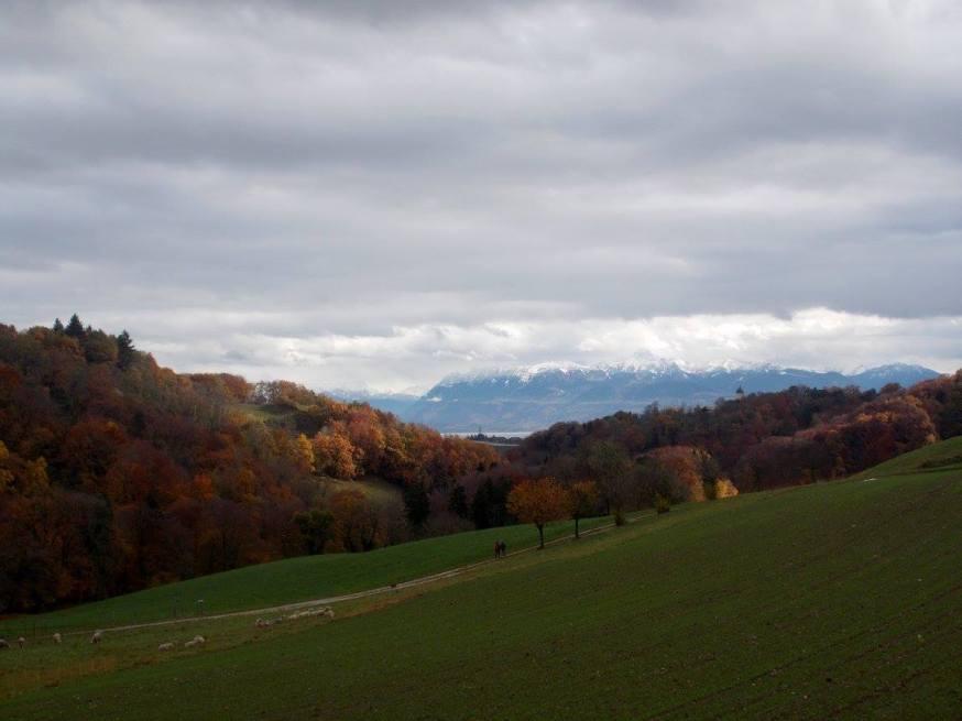 Autumn colours of Switzerland